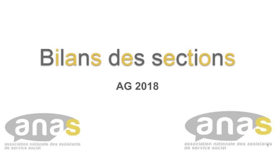 Assemblée Générale 2018 : Bilan des sections, commissions et groupes
