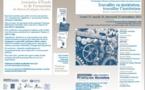 XXIe Journées d'Etudes du Réseau Pratiques Sociales : Travailler en institution, Travailler l'institution