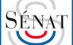 Deux sénatrices déposent un projet de loi relatif à « la protection de l'enfant » : l'ANAS décrypte