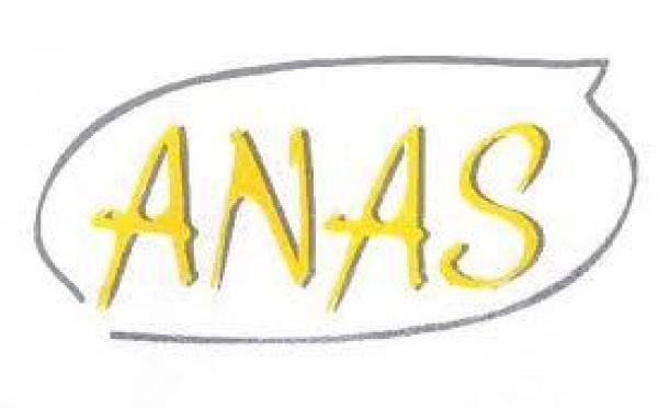Protection de l'enfance : l'ANAS fait 5 propositions d'améliorations